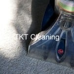Hot water extraction vs steam cleaning. Difference?